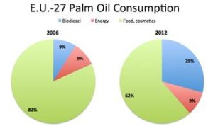 Palm Oil Consumption