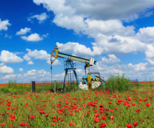 Federal Lease Sales Critical to Maintaining America's Energy Dominance (The Freedom Pub)